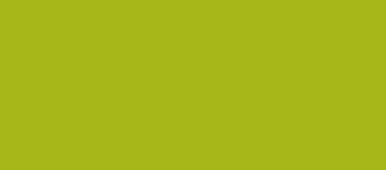 Groene smoothies en nieuwe blenders!
